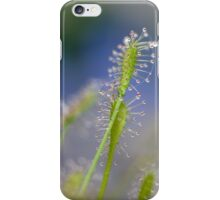 Carnivors iPhone Case/Skin