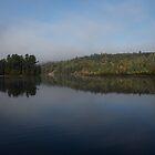 Lakeside Cottage Living - Gentle Morning Fog by Georgia Mizuleva