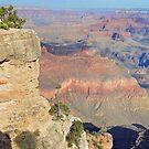 Grand Canyon  by Cody  VanDyke