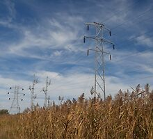 Powerlines by schwaes