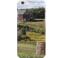 Countryside in the approaching fall iPhone Case/Skin