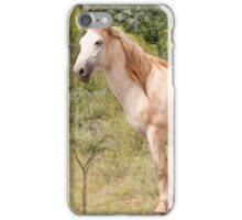 Bush Horse   iPhone Case/Skin