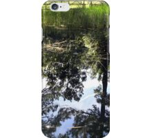 Otter Springs Pond iPhone Case/Skin