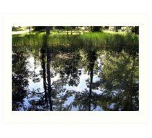 Otter Springs Pond Art Print