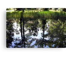 Otter Springs Pond Canvas Print