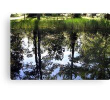 Otter Springs Pond Canvas Print