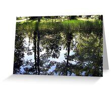 Otter Springs Pond Greeting Card
