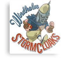 Windhelm Stormcloaks Sportsball Team Metal Print