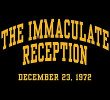 The Immaculate Reception by aBrandwNoName
