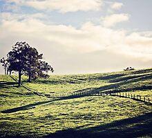Farmscape by JacquiSimons