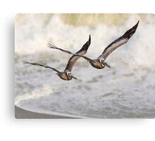 Never Leave Your Wingman - Pelican Pair Canvas Print