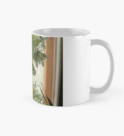La Carotte sauvage, si commune & si secrète ! Mug