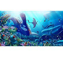 Poke Marine Biology Photographic Print