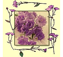 Campanella Framed With Pressed Petals Photographic Print