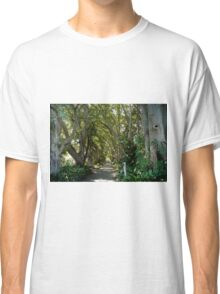 old trees Classic T-Shirt