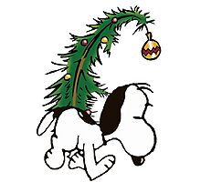 snoopy in christmas Photographic Print