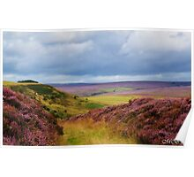 Heather covered Hills Poster