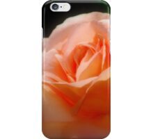 Orange Romance By Lorraine McCarthy iPhone Case/Skin