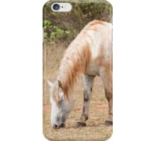 A horse with no name iPhone Case/Skin