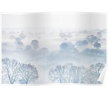 Ethereal Morning Mist Poster