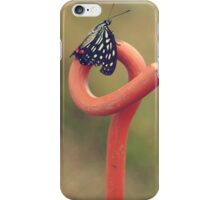 Black Butterfly with White and Orange Markings on Metal Pole iPhone Case/Skin