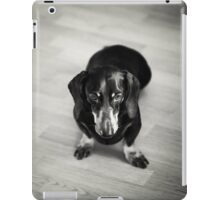 Black and White Portrait of Dachshund Dog iPad Case/Skin