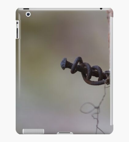 antique ancient walls of castle iPad Case/Skin