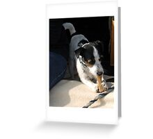 Meet Hiccup Greeting Card