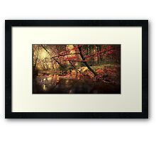 Dreamy Autumn Forest Framed Print