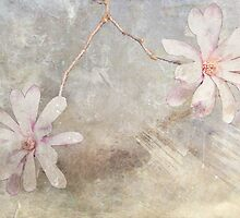 A Pair of Magnolias by Elaine Teague