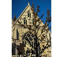 Majestic Cathedral/Hidden by the Tree - Travel Photography  Photographic Print