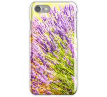 Lavender field iPhone Case/Skin