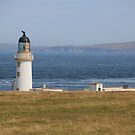 Pentland view by Fiona MacNab