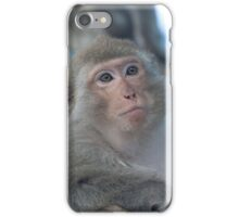 Relaxed macaque iPhone Case/Skin
