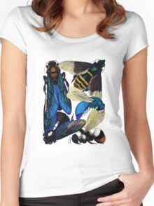 Vintage bees, hornets, wasps nature illustration Women's Fitted Scoop T-Shirt