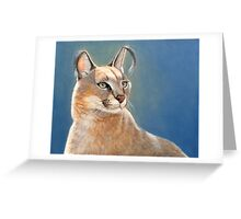 Caracal Cat Wildlife Oil Painting Greeting Card
