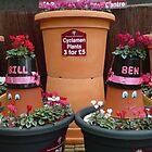 Garden Pots by AnnDixon