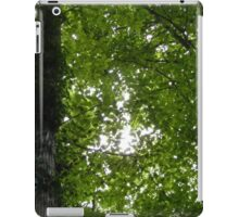 Canopy iPad Case/Skin