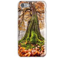 The Power of Roots iPhone Case/Skin