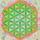 Flower of Life by John Douglas