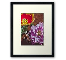 Tulips and Horse Framed Print