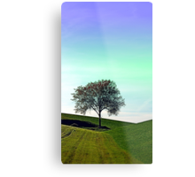 Lonely tree in the middle of nowhere | landscape photography Metal Print