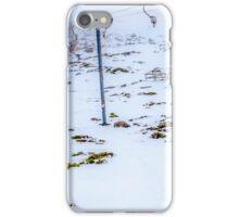 Ben Lomond iPhone Case/Skin