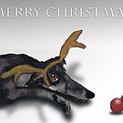 MERRY CHRISTMAS by Hares & Critters