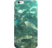 Exmouth - Feeding Time iPhone Case/Skin