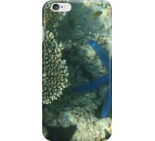 Exmouth - Blue Star iPhone Case/Skin