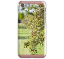 The Apple Harvest iPhone Case/Skin