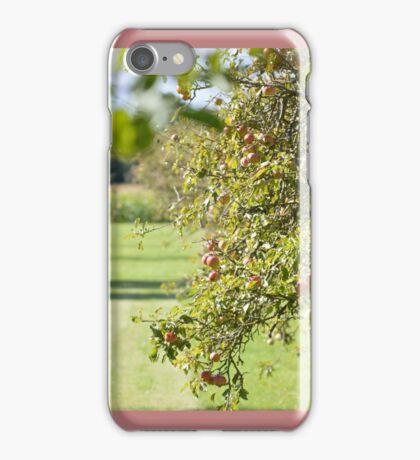 The Apple Harvest iPhone Case/Skin