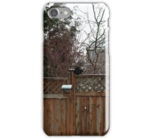Squirrel On The Fence iPhone Case/Skin