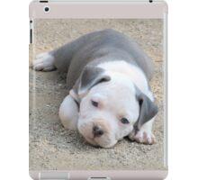 Oscar (now called Bishop) iPad Case/Skin